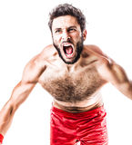Raging boxer Stock Photo