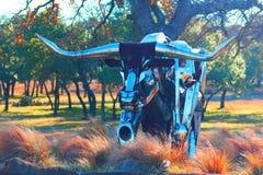 Raging Bull Imagens de Stock