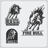 Raging bull. Vector emblems, labels and badges. Stock Images