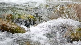 Spring mountain river. Raging clean fresh mountain river flowing stock footage