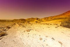 Raging colors of the desert in Israel. Royalty Free Stock Photo