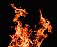Raging flames red fire black background Stock Photo