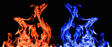 Raging flames red fire black background Stock Images