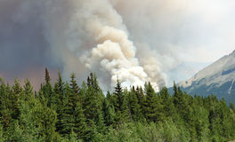 A raging forest fire in the rocky mountains Royalty Free Stock Photography