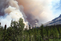 A raging forest fire in the rocky mountains Stock Photos