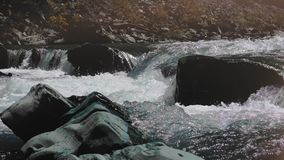 Raging Mountain river. Wildness of clean, clear water in the mountain river. concept of orgasm stock video