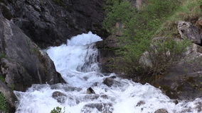 Raging Mountain Stream in Summer. A scenic stream in the Colorado mountains in summer stock video footage