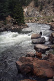 Raging river. A raging river in colorado Royalty Free Stock Image