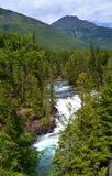 RAGING RIVER AND WATERFALL, GLACIER NATIONAL PARK Royalty Free Stock Photos