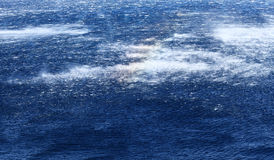 Raging sea with furious waves Royalty Free Stock Photography
