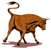 Raging texas longhorn bull Stock Image