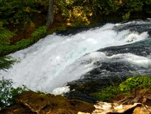 Raging Waters. Upper Koosah Falls on the McKenzie River, Oregon Stock Photos