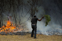 Raging wildfire in Port Elizabeth, South Africa Royalty Free Stock Photo