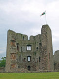 Raglan Castle 2 Royalty Free Stock Photography