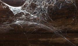 Ragnatela astratta su fondo di legno Fotografia Stock Libera da Diritti