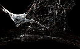 Ragnatela astratta su fondo nero Fotografia Stock Libera da Diritti