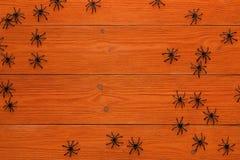 Ragni neri decorativi sui bordi di legno arancio Fondo per Fotografie Stock Libere da Diritti