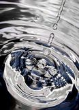 Ragno d'argento Immagine Stock Libera da Diritti