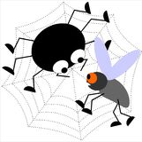 Ragno e zanzara Immagine Stock Libera da Diritti