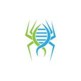 Ragno Logo Symbol del DNA Illustratore di vettore Immagini Stock