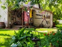 Ragno nel giardino fotografia stock libera da diritti