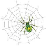 Ragno su un Web. Fotografia Stock