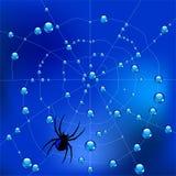 Ragno sul web nelle gocce di rugiada Illustrazione di vettore illustrazione di stock