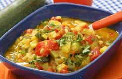 Ragoût avec des légumes de thon Image stock