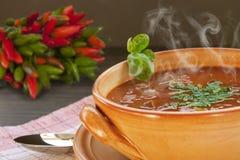 Ragoût de carne d'escroquerie de s/poivron photographie stock