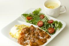 Ragoût de boeuf avec l'oeuf et la salade Images libres de droits