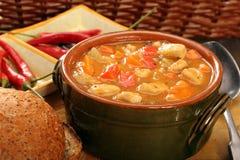 Ragoût de poulet avec les piments chauds dans la cuvette Images stock
