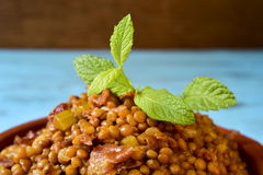 Ragoût espagnol de lentille Photo libre de droits