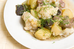 Ragout Royalty Free Stock Photo