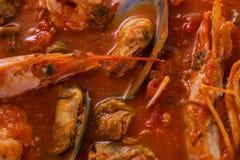 Ragout mit Garnelen und Schalentieren in der Tomatensauce Appetitanregendes Meeresfrüchteragout stockfoto