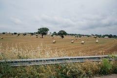 Rags des Heus auf dem Gebiet in Apulien Italien Stockbilder
