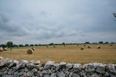 Rags des Heus auf dem Gebiet in Apulien Italien Lizenzfreies Stockfoto