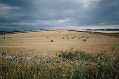 Rags des Heus auf dem Gebiet in Apulien Italien Lizenzfreie Stockbilder