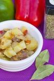 Ragu da carne com vegetarianos na bacia Foto de Stock Royalty Free