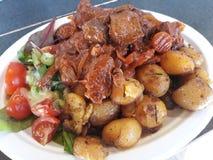Ragu med potatisar och lantlig sallad royaltyfria foton