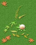Ragweed season Stock Photography