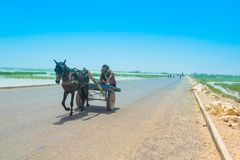 Rahim yar khan, Punjab,Pakistan-June 23,2019: a villager sitting on a horse cart on a high way stock photography