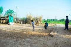 Rahimyar khan, Punjab, 1,2019 Πακιστάν-Ιουλίου: μερικά τοπικά αγόρια που παίζουν το γρύλο σε ένα χωριό στοκ φωτογραφία