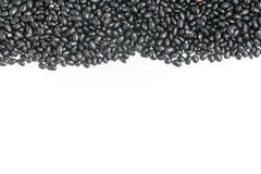 Rahmen der schwarzen Bohnen im weißen Hintergrund Phaseolus- vulgaris'Schwarzes Lizenzfreies Stockfoto