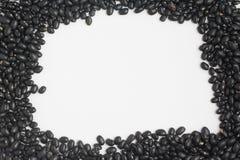 Rahmen der schwarzen Bohnen im weißen Hintergrund Phaseolus- vulgaris'Schwarzes Stockbilder