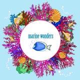 Rahmen für Text im Kreisseethema mit Korallen und Muscheln Lizenzfreies Stockfoto