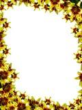 Rahmen von der Blume Lizenzfreie Stockfotografie