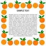 Rahmen von Orangen und von orange Scheiben Lizenzfreies Stockfoto