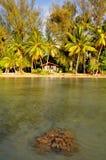 Raiarea, french polynesia Stock Image