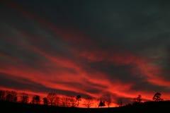 Raias do vermelho do por do sol Foto de Stock
