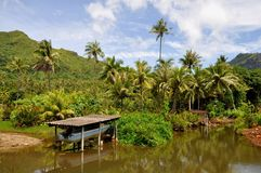 Raiatea, french polynesia royalty free stock photo